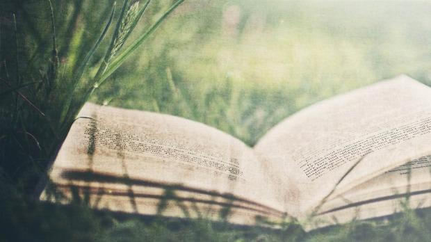 Book-Wallpaper-25.jpg